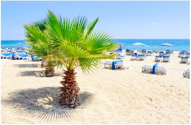 FLIGHTS, ACCOMMODATION AND MOVEMENT IN ALANYA