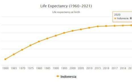 Indonesia Life Expectancy 2021
