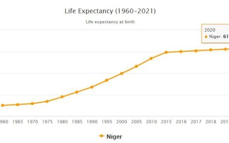 Niger Life Expectancy 2021